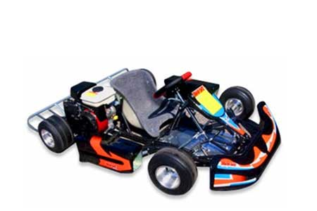 kids and youth racing go-kart cost
