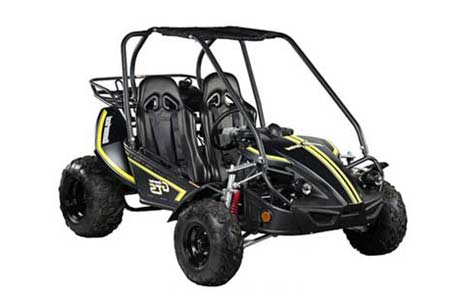 2-seater off-road go-kart